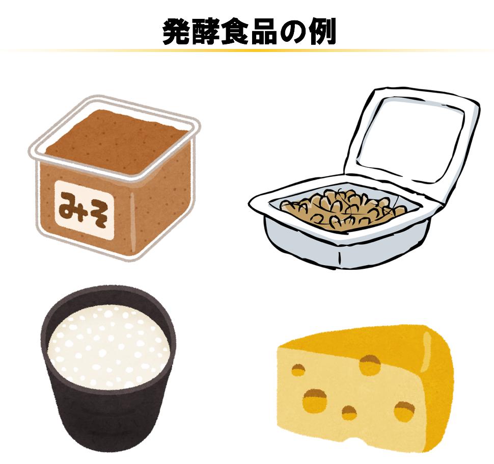 発酵食品の例